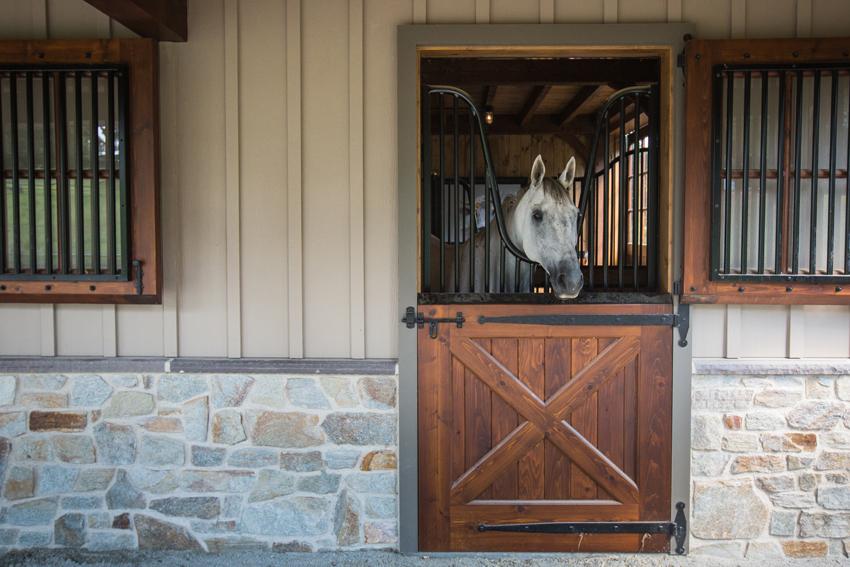 Custom horse stall Dutch door with yoke and vertical bars